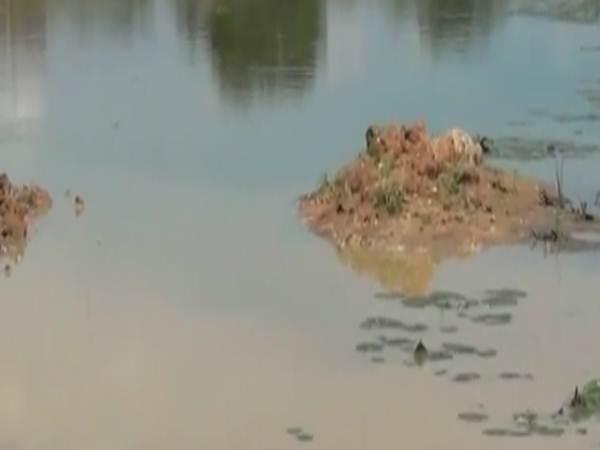 குட்டையில் மூழ்கி 3 குழந்தைகள் பலி.. திருவாரூர் அருகே சோகம்