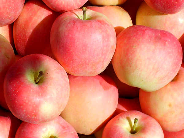 India bans Chinese apple imports