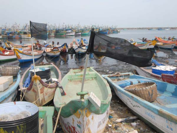 Srilanka biring an ordinance against Tamil fisher folk and rameshwaram fishermen are in strike