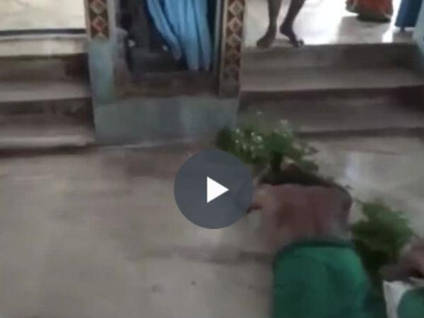 டெல்லி போராட்டத்துக்கு ஆதரவு- மணப்பாறை விவசாயிகள் அங்கப்பிரதட்சணம்- வீடியோ