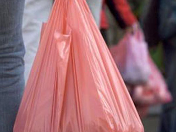 Nellai collector advised people not to carry plastics for Sorimuthu Ayyanar temple festival