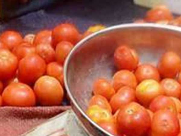 Tomato price less due to productivity