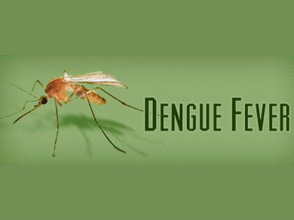 2 died of dengue fever in Kovai