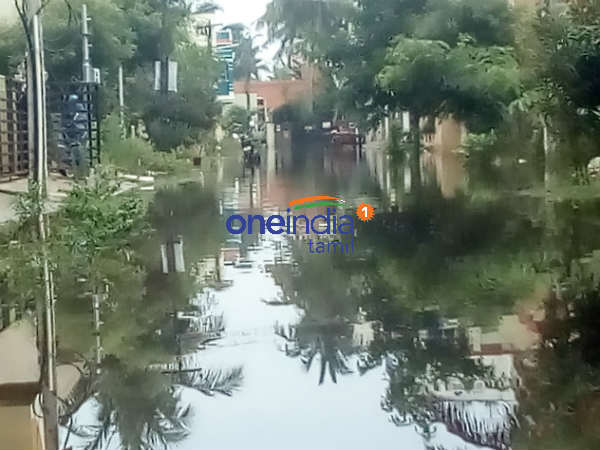 Nearly 3 thousand hectare of Samba crops submerged in heavy rains at Thiruvarur