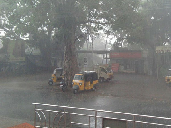 Thirunelveli received heavy rainfall yesterday and rain water filled in low lying area