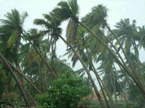 Warning !! The Low depression formed near Bay of Bengal may change into a Cyclone