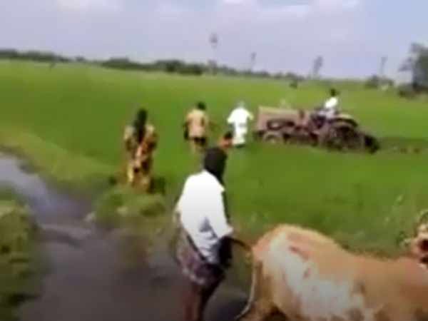 District Magistrate reviews damaged paddy crops issue in Arni