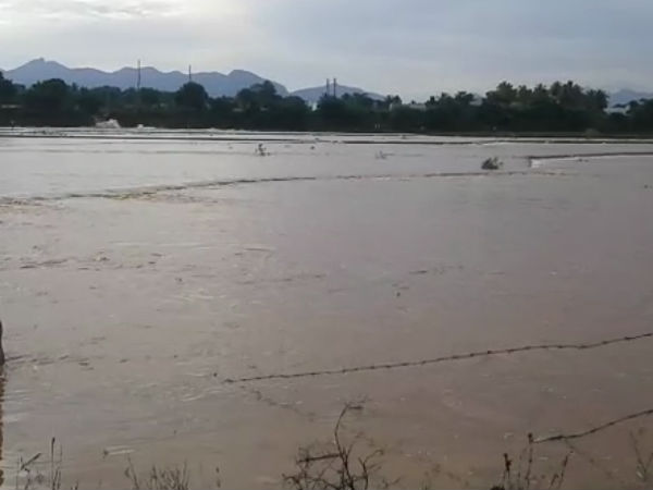 650 Acres affected because of pond near Sengottai breaks out