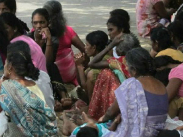 SriLankan War leads to high number of Widows without any life support