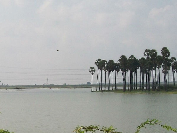 Problem in the shutter of pond in Tuticorin
