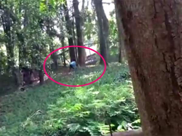 drunkard youth jumps into lion cage in tiruvandrum