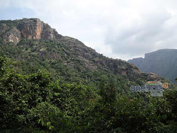 Forest department banns trekking in Kollimalai