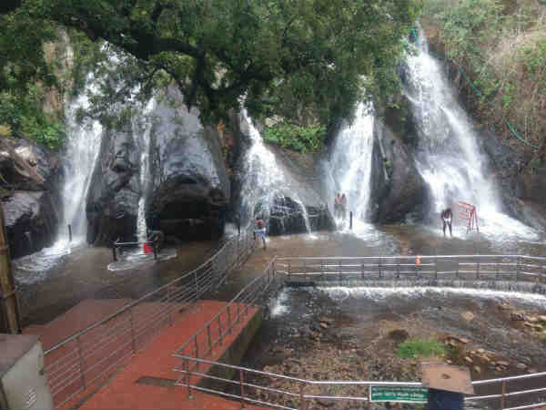 Rains at Thenkasi and westernghats brings water in falls