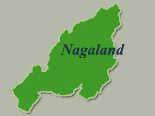 Nagaland's Present and former CM's win in election