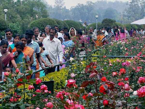 Tourists throng Ooty