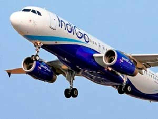 IndiGo passenger complaint about Mosquitoes, thrown out of flight