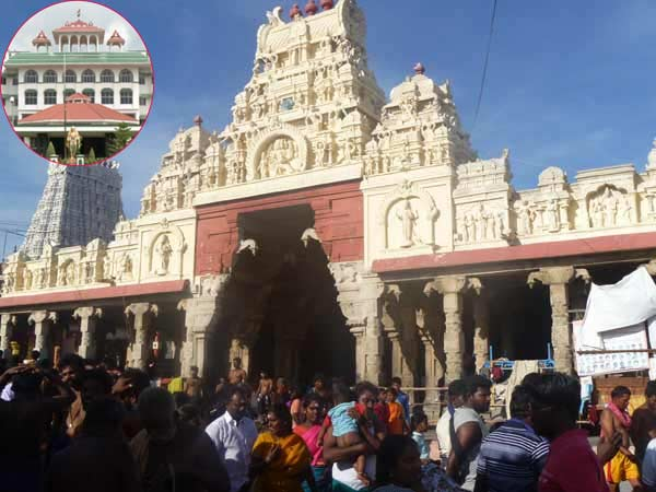 High Court Madurai Branch has ordered the Priests of Thiruchendur Temple