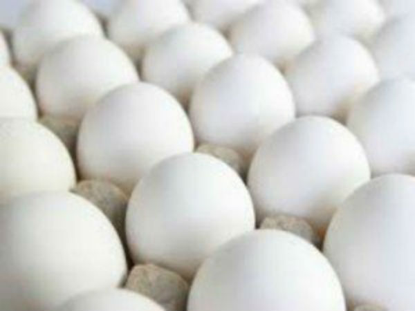 Tamilnadu government's egg tender should give to poultry farms