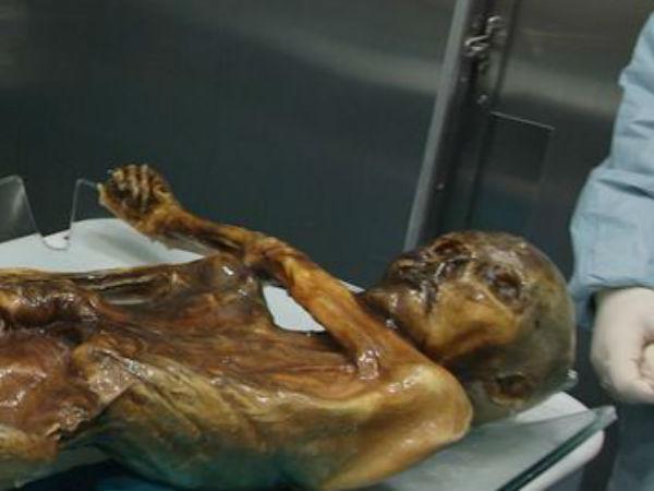 5300 ஆண்டுகளுக்கு முன் கொல்லப்பட்ட 'ஓட்ஸி' கடைசியாகச் சாப்பிட்டது என்ன தெரியுமா?