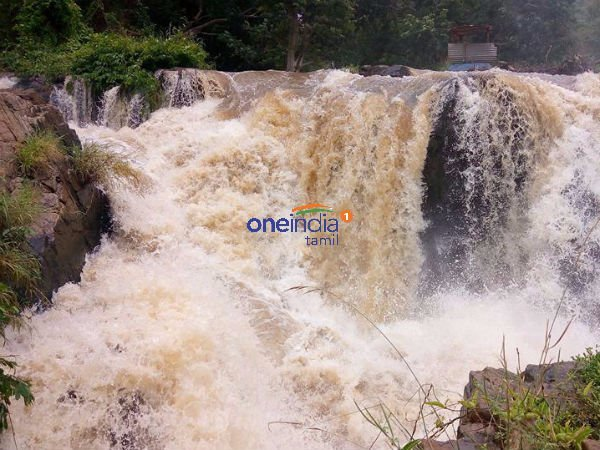 Flood alert issued in Hogenakkal