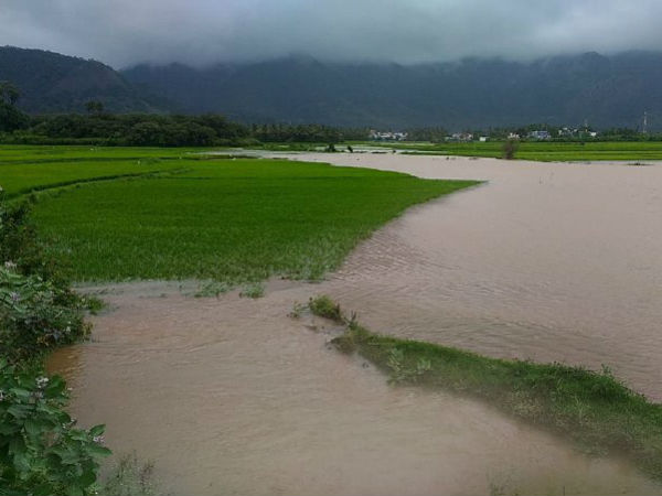 Heavy rain and flood: Leave announced for schools and colleges in Kumari and Nilgiris