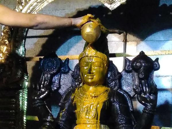 தன்வந்திரி பெருமாளுக்கு ஏகாதசி நெல்லிப்பொடி அபிஷேகம் - திருவோணம் தைலாபிஷேகம்