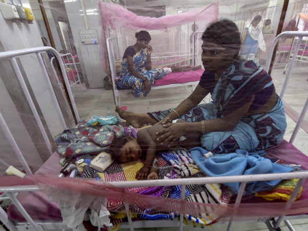 Dengue fever and swine flu in Tamilnadu: Officials appointed