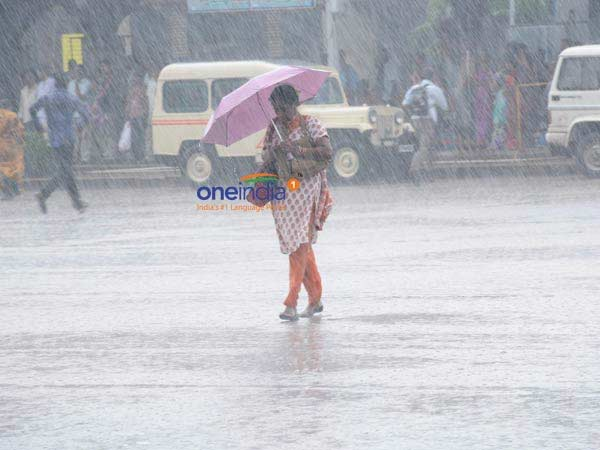 Holiday announced for 3 districts due to heavy rain in Tamilnadu