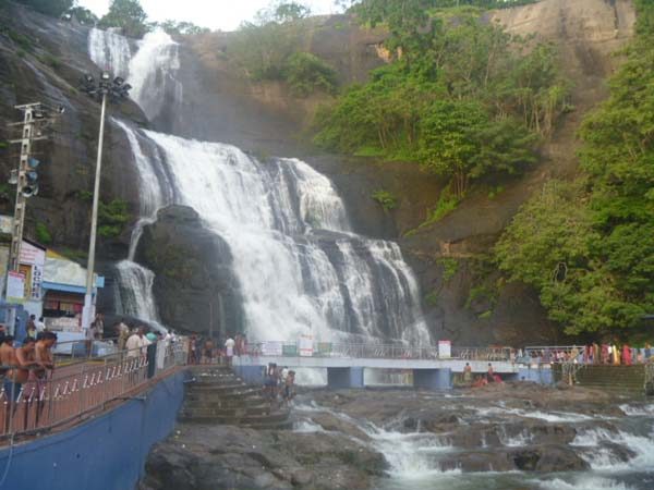 A Python swept away in Courtallam main falls