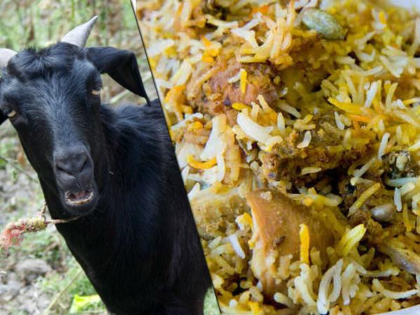 200 ஆடுகள் பிரியாணிக்கு ரெடியா இருக்கு... வந்து சேருங்க மக்கா! எங்கே தெரியுமா?