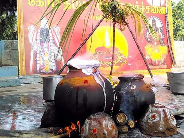 தன்வந்திரி பீடத்தில் சமத்துவ பொங்கல் விழா சமயநூல்கள் பரிசளிப்பு