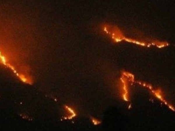 Forest fire: Tourist ban in kollimalai
