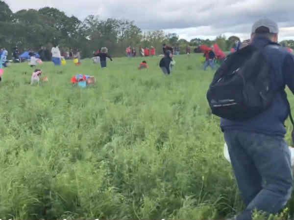 Video: மேலே பார்.. என்ன வருது.. ஆஹா.. முட்டையப்பா முட்டை.. அமெரிக்காவில் கலகல ஈஸ்டர்