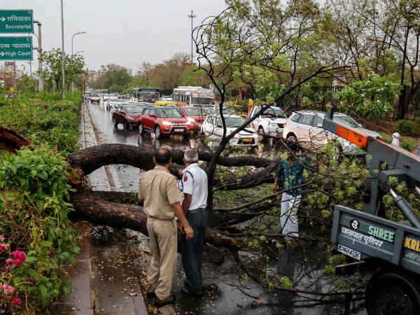 Rain and storms hit: 6 people have died across Rajasthan
