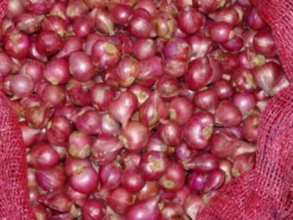 Small Onion Price Hike in Dindigul market
