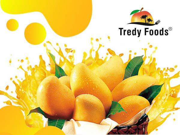 Tredyfoods.com offers a variety of mangoes with nature touch and taste