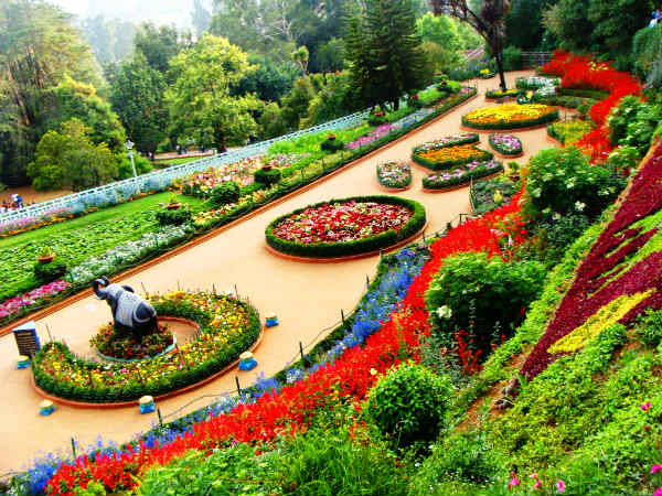 Tourists Crowded with Excited go to the ooty flower exhibition