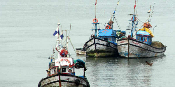 Fishing ban in Tamil Nadu completed..Will the price of fish fall?