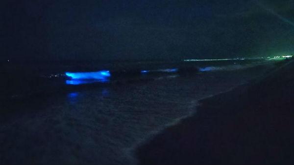 சென்னையில் திடீரென நீல நிறமாக மாறிய கடல் அலைகள்..  Chennai-seasparkles-1566221904