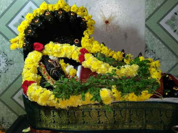 வீட்டில் துளசி இருந்தால் மகாலட்சுமி மட்டுமல்ல அந்த கிருஷ்ணரும் கூடவே இருப்பார்