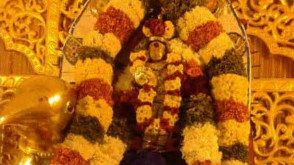 சனிப்பெயர்ச்சி 2020-23: சிம்ம லக்னகாரர்களுக்கு விபரீத ராஜயோகம் தரும் சனிபகவான்