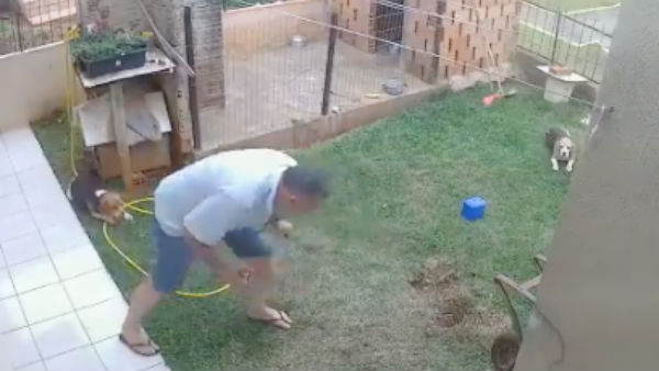 man blows up yard trying to kill bugs