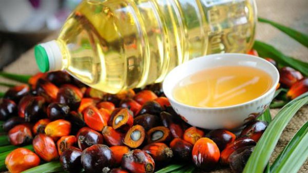 dmk person attacks old man video viral India to restrict import of palm oil from Malaysia