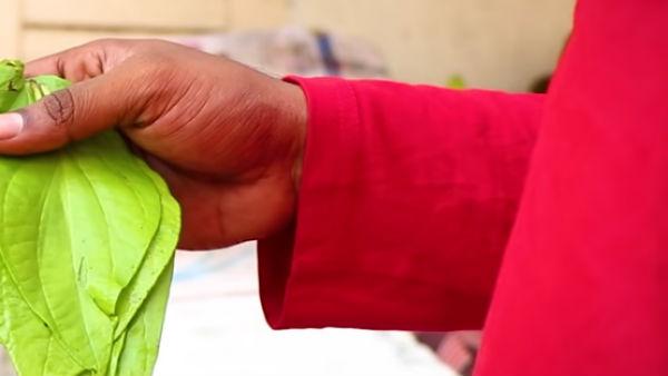 'கொட்ட பாக்கும் கொழுந்து வெத்தலை' மகத்துவம் பற்றி சொல்லி அசத்திய தேனீர் இடைவேளை யூடியூப் சேனல்