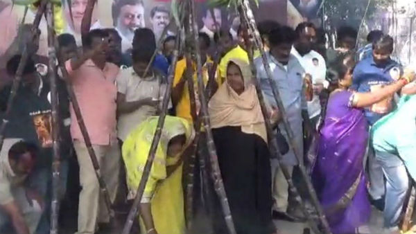 Rajini fans celebrations in hosur