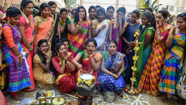 Pongal: People in Tamilnadu celebrates their farmer festival