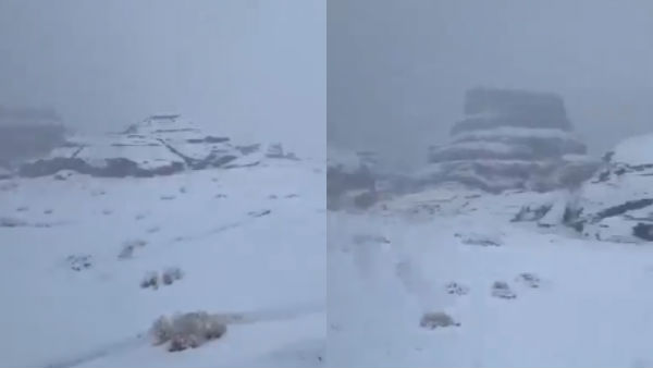 Heavy snow blankets parts of Saudi Arabia: video viral