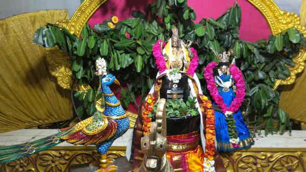 மகாசிவராத்திரியில் சிவனுக்கு எந்த அபிஷேகம் செய்தால் என்ன பலன் தெரியுமா