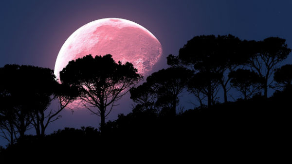 Super Pink Moon that appears in the sky