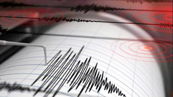 An earthquake with a magnitude of 4.6 on the Richter Scale hit in Delhi